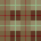 Seamless Plaid fabric texture cells with stripes Scotland patter Royalty Free Stock Images