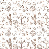 Seamless plant seeds texture. Seamless nature pattern,background, with seeds, plants. Doodle, sketchy style hand drawn line art vector illustration Royalty Free Stock Photo