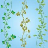 Seamless plants. Vector image of seamless plants Stock Photography