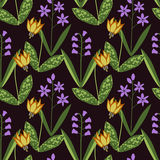 Seamless plants pattern Stock Images