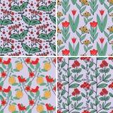 Seamless plants patterns Stock Photo