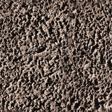 Seamless plaster texture. Stock Photography