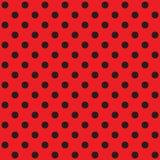 Seamless Polka dot background Royalty Free Stock Image