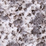 Seamless polluted snow texture, background. Stock Photos