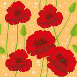 Seamless poppies Stock Photo