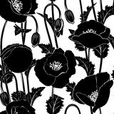 Seamless from poppies. Seamless from black poppies(can be repeated and scaled in any size Stock Photo