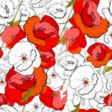 Seamless of poppies stock photo