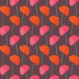 Seamless poppy bloom pattern background Stock Images