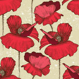 Seamless poppy ornament Royalty Free Stock Images