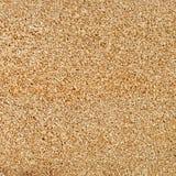 seamless of pumice porous texture , natural stone Stock Photos