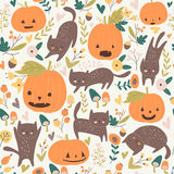 Seamless pumpkin and cats Stock Photos