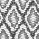 Seamless python snake skin pattern. Vector Stock Photography