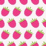 Seamless raspberry pattern. Stock Image