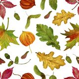 Seamless raster pattern with watercolor autumn leaves on a white background. Stock Image