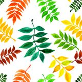 Seamless raster pattern with watercolor autumn leaves. For your fabric design, wrapping paper, web design Stock Photos