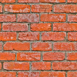Seamless red brick wall background. Image Royalty Free Stock Photos