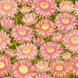 Seamless red chrysanthemum backgrounds Stock Photo
