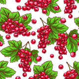 Seamless red currants Royalty Free Stock Image