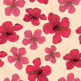 Seamless with red flowers Stock Image