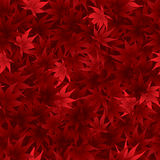 Seamless red maple leaves pattern Stock Photos