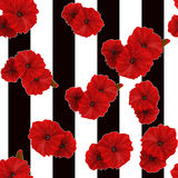 Seamless red poppy flowers pattern striped background Stock Photo