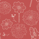 Seamless red vintage floral pattern with aster and daisy Stock Photos