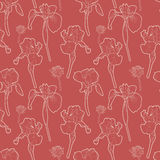 Seamless red vintage floral pattern with irises Stock Photography
