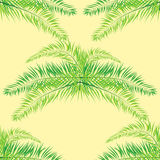 Seamless repeat coconut leaves Stock Image