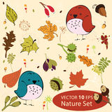 Seamless repeat pattern. With autumn leaves, berries and birds Stock Images