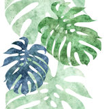 Seamless repeatable monstera leaf border Royalty Free Stock Photo