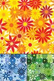 Seamless repeating flowers. Seamless repeating flower background with three color variations Royalty Free Stock Image