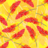 Seamless repeating pattern of colored feathers.Vector Royalty Free Stock Image