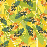 Seamless repeating pattern of colored feathers.Vector Stock Photos