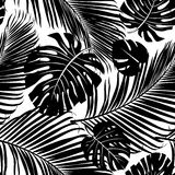 Seamless repeating pattern with silhouettes of palm tree leaves. Royalty Free Stock Images