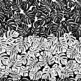 Seamless repeating pattern with silhouettes of palm tree leaves in black and white background. Stock Images