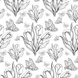 Seamless repeating pattern with tulips and butterflies.Vector Royalty Free Stock Photo