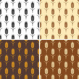 Vector seamless repeating wheat patterns Royalty Free Stock Photo