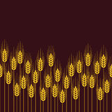 Seamless repeating wheat, rye or barley field pattern. vector  Royalty Free Stock Photography