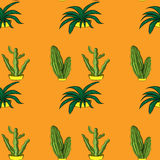 Seamless retro cactus plants for the home illustration background pattern in  Stock Photos