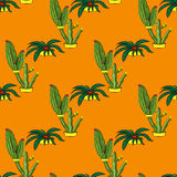 Seamless retro cactus plants for the home illustration background Stock Images