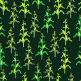 Seamless retro corn field pattern. On black Royalty Free Stock Images