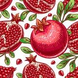 Seamless ripe hand-drawn pomegranate Stock Image