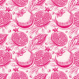 Seamless ripe sketch pomegranate Royalty Free Stock Photos