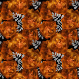 Seamless romantic blurred orange roses background pattern print Stock Image