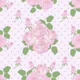 Seamless romantic pattern with roses Royalty Free Stock Photography