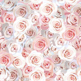 Seamless rose background Royalty Free Stock Images