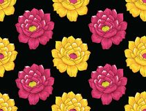 Seamless rose flower pattern on black background. For textile design and fabrics Stock Photos