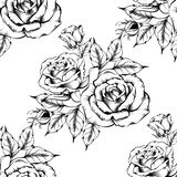 Seamless rose pattern with sketch flowers royalty free illustration