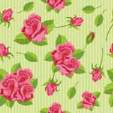 Seamless roses. Illustration of a seamless roses Royalty Free Stock Photo