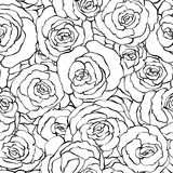 Seamless roses lineart black and white Stock Photography